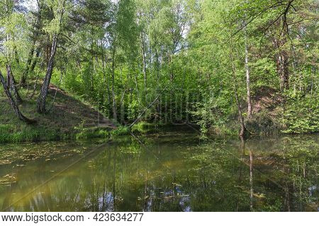 Small Shallow Lake Partly Overgrown Among The Surrounding Forested Hills In Early Summer
