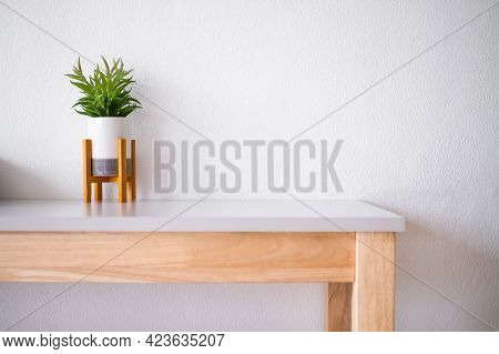 Realistic Artificial Tree In Vase On White Wooden Table And Wall White Cement Background. Luxury Mod