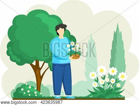 Man Cultivating Plants On Backyard Flowers On Beautiful Flower Bed, Enjoying White Daisies In Spring