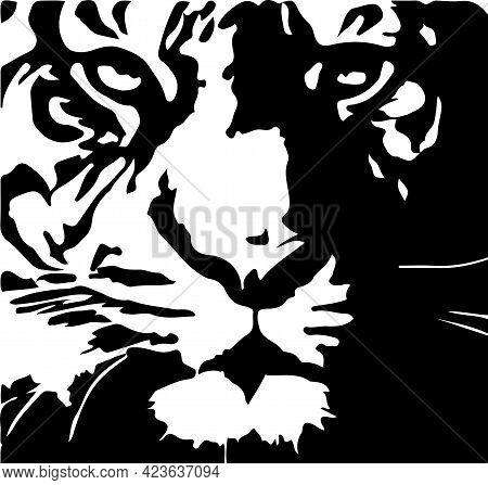 Tiger Vector On White Background  Wild Life, Wildcat, Wildlife, Zoo
