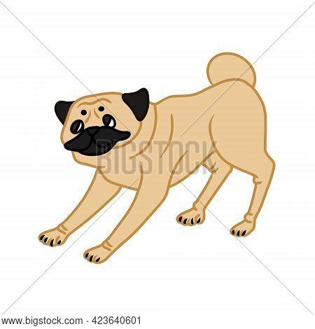 Image Of Cute Playful Pug On White Background. Design Element . Vector Illustration.