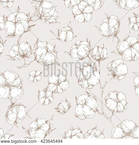 Seamless Botanical Pattern With Outlined Soft Fluffy Cotton Flower Branches. Design Of Endless Repea