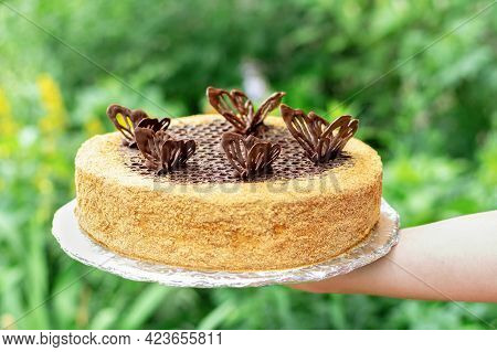 Honey Cake On A Round Cake Board In A Hand. Picnic Pie Decorated With Chocolate Butterflies And Crum