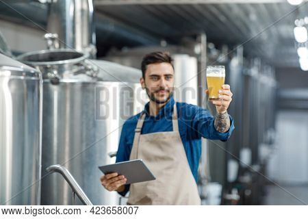Male Inspector Working In Distillery Checks Beer With App And Gadget
