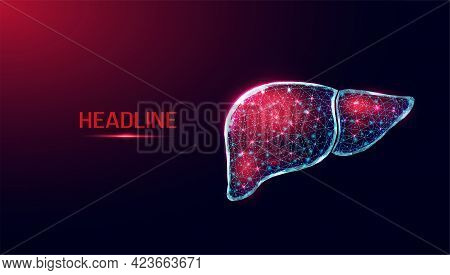 Human Liver. Wireframe Low Poly Style. Concept For Medical, Treatment Of The Hepatitis. Abstract Mod