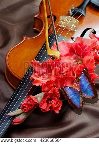 Music Concept. Violin With Bow, Red Gladiolus Flower And Bright Blue Morpho Butterfly On Brown Silk