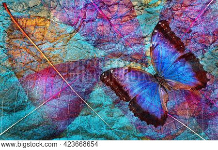 Abstract Natural Blue Background. Morpho Blue Butterflies And Transparent Leaves Texture Background.