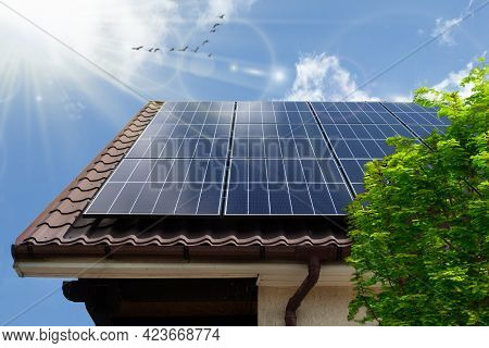 Concept Clean Power Energy - Solar Panel On The Roof. Green Tree