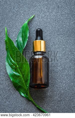 Serum Bottle And Green Leaves On Gray Stone Background. Essential Oil, Fluid, Plant Extract, Bio Ski