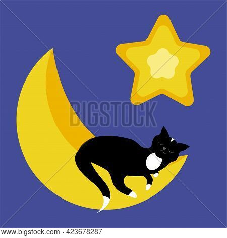 Cute Sleeping Black Cat On Crescent And Star. Cartoon Vector Illustration.
