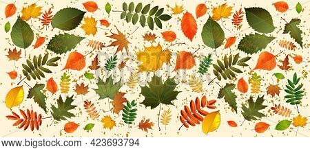 Abstract Vector Illustration Background With Falling Autumn Leaves. Eps10. Horizontal Background Wit