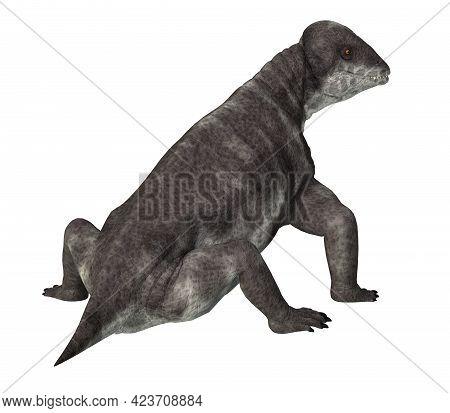 Criocephalosaurus Dinosaur Tail 3d Illustration - Criocephalosaurus Was A Therapsid Dinosaur That Li