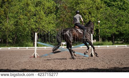 Young Man Rider On Brown Horse In Equestrian Sport Competition. Horse Riding On The Arena. Dressage