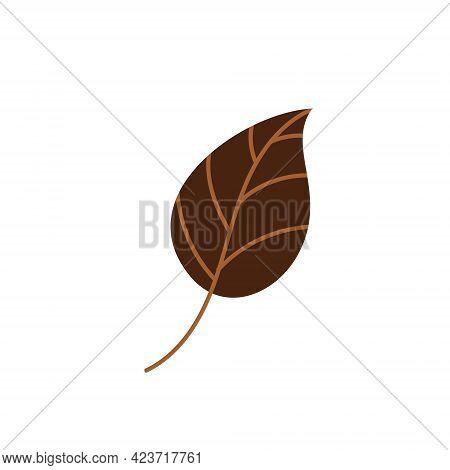 Brown Fallen Autumn Leaf . Vector Illustration. Design Element For Autumn Holidays