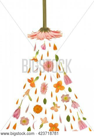 Art floral shower made of beautiful natural flowers. Trendy colorful blooming abstract idea with bath jet stream composition. Botany concept with leaves, blossoms, petals  and buds