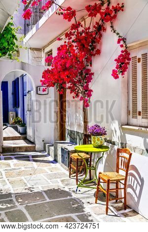 Charming narrow typical streets of Greek islands, Chora town with pink floral tree. Cyclades, Greece
