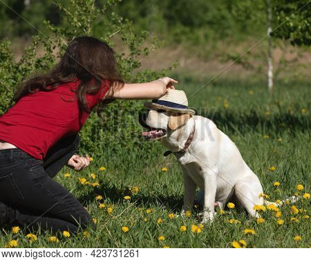 Labrador Dog With Girl Owner Spend Day At Park Playing And Having Fun. Funny Dog In Hat