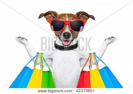 Compras de perro