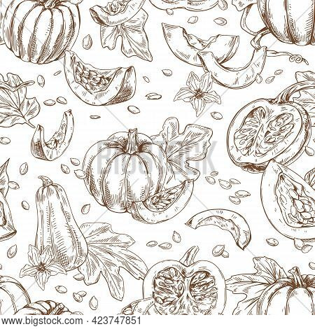 Seamless Outlined Pattern With Engraved Pumpkins And Leaves. Endless Repeatable Black And White Back