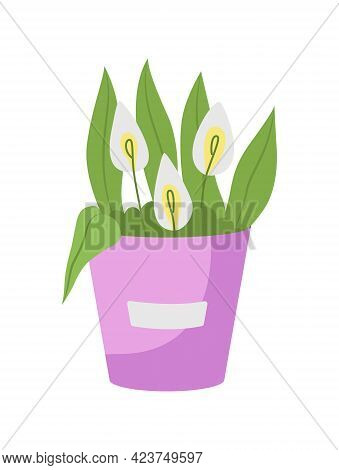 Calla Lilies Flower Arrangement Semi Flat Color Vector Object. Innocence Symbol. Wedding Bouquet Fro
