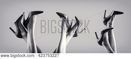 Shapely Legs, A Girl In Shoes High-heeled. High Heel Shoes. Beautiful Legs Woman. Pretty Female Legs