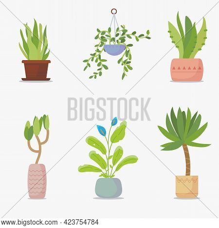 Set Of Green House Plants. Green Plants In Flowerpot. Big Green Leaf And Home Garden Set Of Flowers.