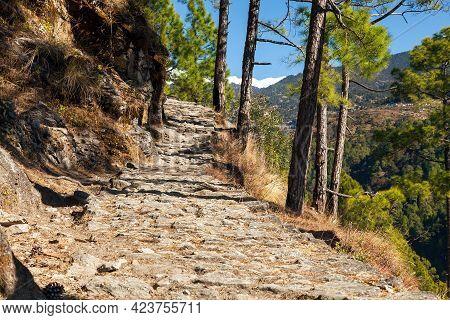 Aboriginal Walking Path In The Indian Himalayas, Uttarakhand, India, Himalayan Stone Patway