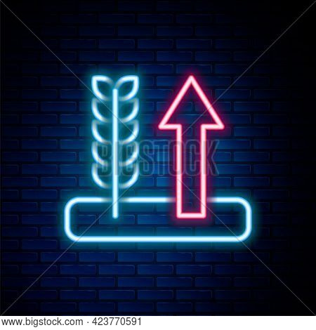 Glowing Neon Line Cereals Set With Rice, Wheat, Corn, Oats, Rye, Barley Icon Isolated On Brick Wall