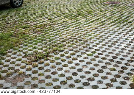 Tiled Path With Grass Weeds At Car Site. Weed Control.