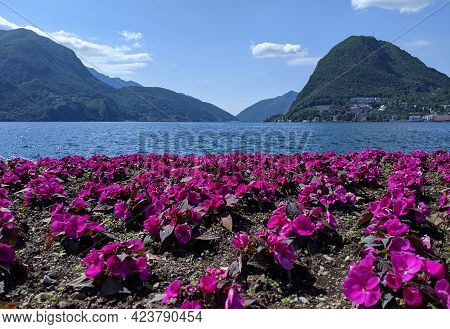 Lugano Lake As Viewed From Ciani Park In Switzerland