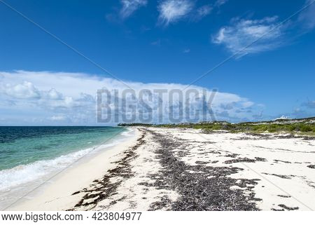 The View Of An Empty Beach Covered With Algae On Grand Turk (turks And Caicos Islands).