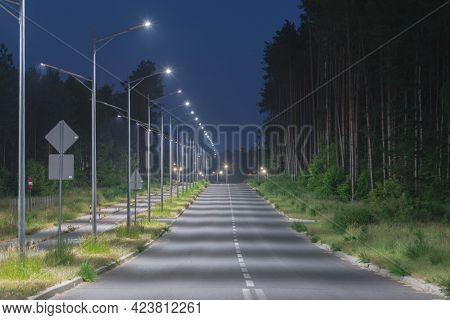 The Photo Shows An Asphalt Single Lane Road Running Through A Pine Forest. The Roadsides Are Covered