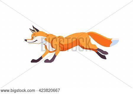 Cartoon Fox Jumps And Running. Cheerful, Festive, Jubilant Emotions In The Fox. Vector Illustration