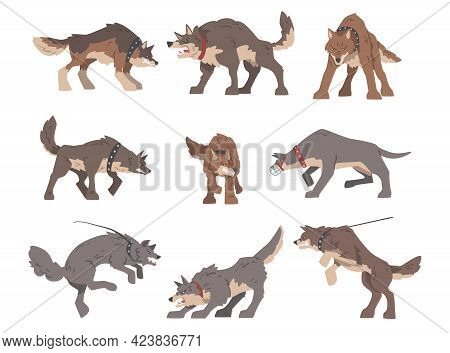 Set Of Aggressive Large Dogs Baring Its Teeth And Barking Vector Illustration