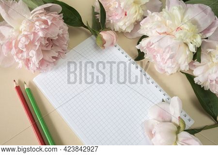 A Notebook In A Cage On A Spring And Colored Pencils, Large Beige Flowers And Peony Buds On A Beige