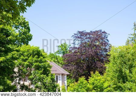Detached Suburban House In The Garden Against Blue Sky.