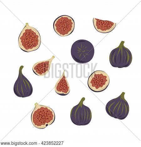 Fresh Ripe Delicious Juicy Figs Whole And Cut In Half And Quarter. Set Of Fruits Isolated On White B