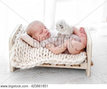 Adorable newborn baby boy sleeping with little fluffy kitten in small stylized bed. Cute infant kid wearing knitted costume napping with kity pet during studio photoshoot