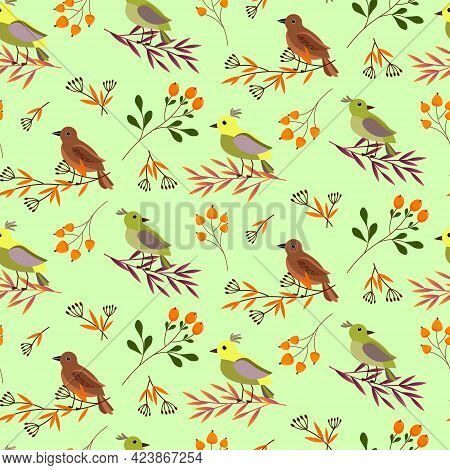 Pattern With Forest Birds On The Branches. Forest Grass And Orange Berries. Vector Illustration On A