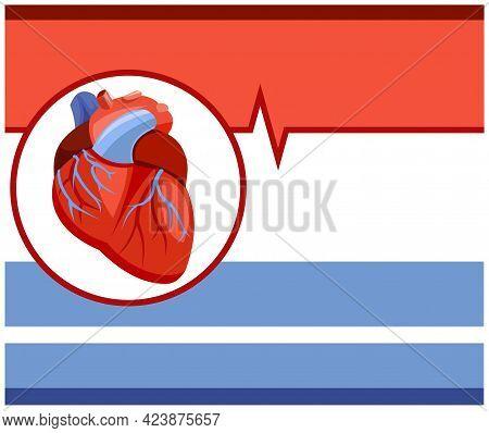 Human Heart. Cardiological Medicine. Background Illustration. Medicines And Services Of A Cardiologi