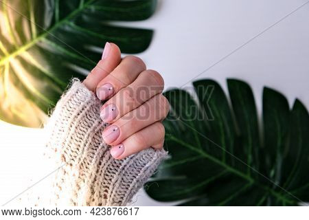 Woman Hands With Beautiful Nude Manicure On Palm Leaf. Female Manicure, Natural Look. Nails Care. Se
