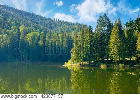 Mountain Lake In The Morning. Summer Landscape With Forest Reflecting In The Water. Nature Scenery O