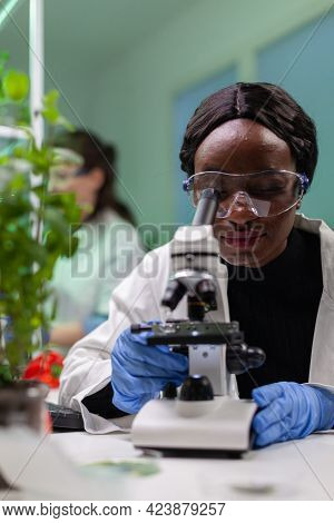 Biologist Researcher Scientist Looking At Leaf Sample Under Medical Microscope While Writing Biologi