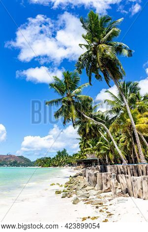 Cote D'or Beach (anse Volbert) On Praslin Island, Beautiful Tropical Sandy Beach With Lush Coconut P