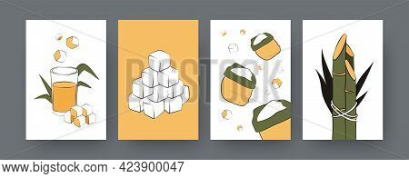 Collection Of Contemporary Posters With Sacks Of Sugarcane. Sugar Cane Cubes, Juice, Plants Cartoon