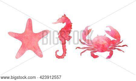 Set Of Three Aquarelle Red Sea Animals On White Background Hand-drawn Digital Illustration