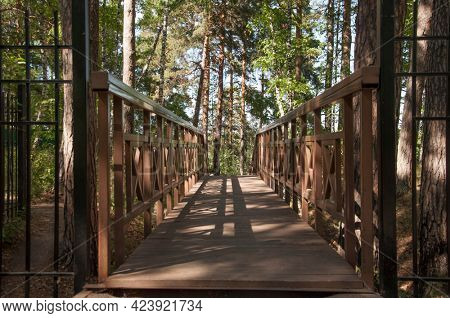 Old wooden bridge with stairs in forest. Staircase in the wood. Footbridge in park. Adventure and explore concept.