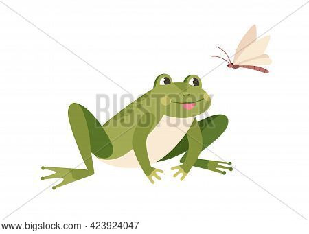 Cute Funny Frog Hunting Butterfly. Hungry Toad Watching For Flying Insect. Happy Little Froglet Sitt