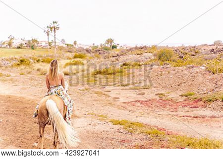 Young Woman Riding A Horse In Countryside. Concept About Love Between People And Animals.