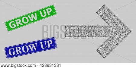 Wireframe Net Mesh Right Direction Arrow Model, And Grow Up Blue And Green Rectangular Unclean Stamp